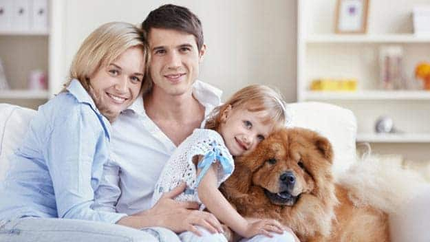 Wills & Trusts dog-young-family Direct Wills Lancashire